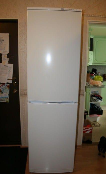 Холодильник Атлант в домашнем интерьере