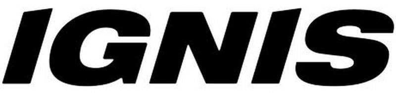 Официальный логотип Игнис