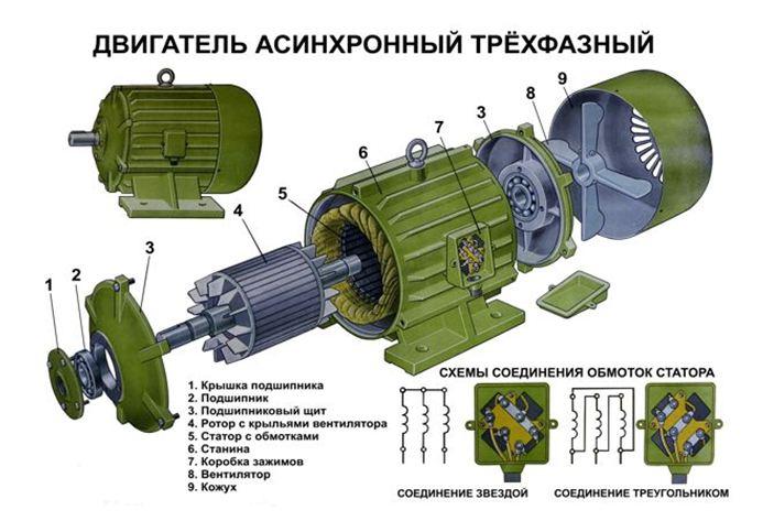 Устройство асинхронного трехфазного двигателя