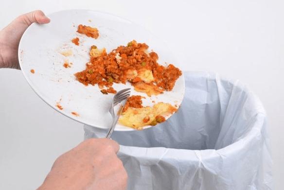 Утилизация остатков еды
