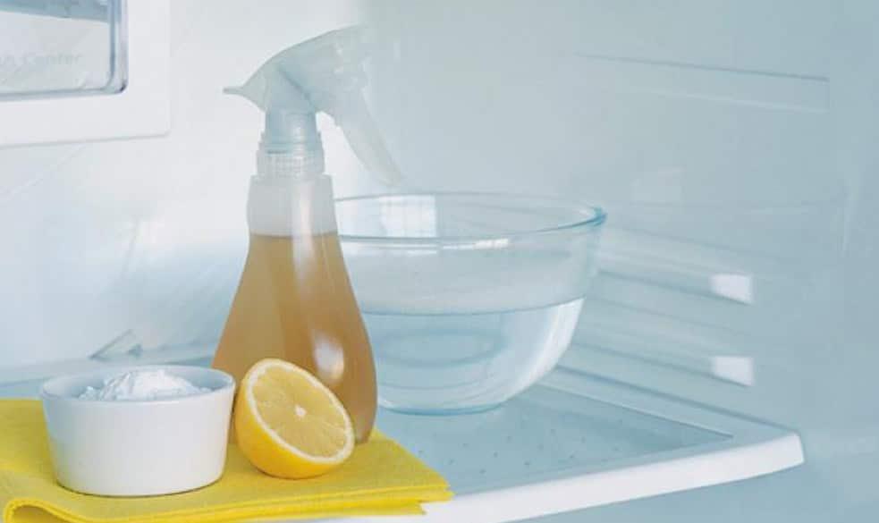 Использование народных средств в мытье морозилки